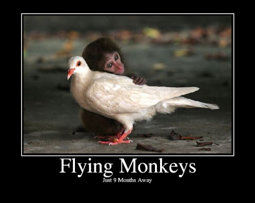 Flyingmonkeys1