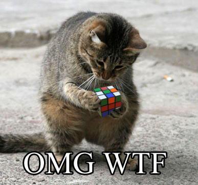 Funny-lol-cat-wtf13
